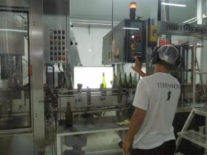 Being with Ana Paula, we got to see the process every step of the way, from the growing to the bottling.